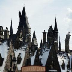 Das große Harry Potter Quiz