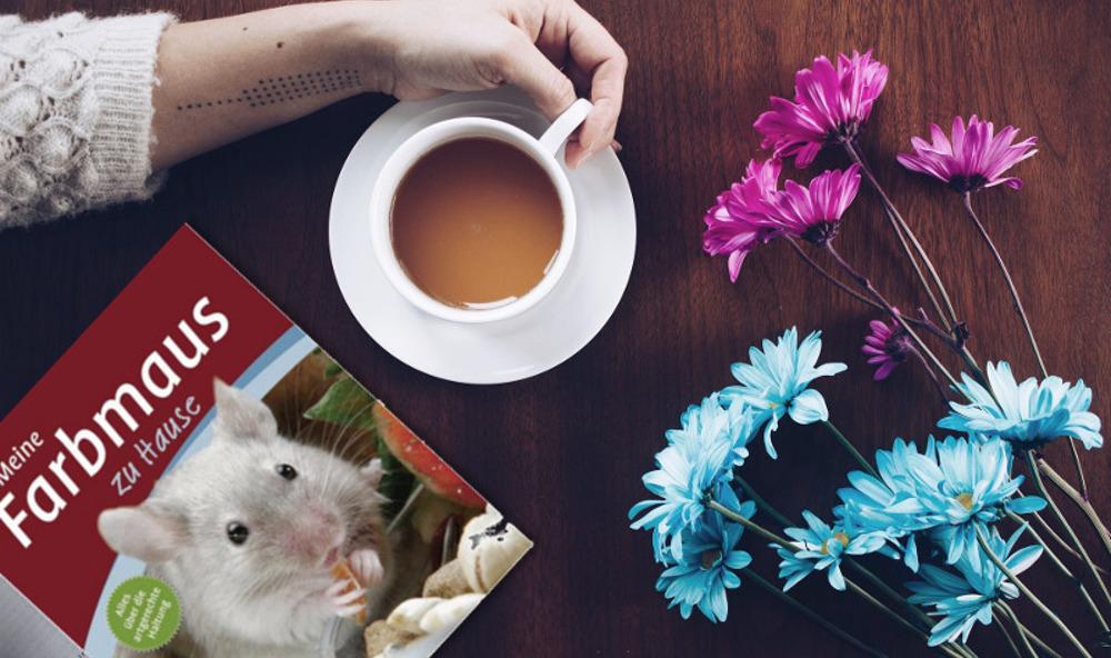 Buch Rezension: Meine Farbmaus zu Hause