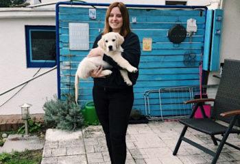 Lesemonat September 2019: Tierisch viel los